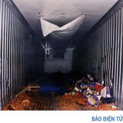Hà Lan bắt giữ 25 người trốn sang Anh trong container đông lạnh