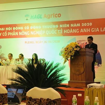 HAGL Agrico (HNG) thông báo dừng kế hoạch huy động 800 tỷ trái phiếu