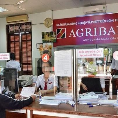 Kiểm toán lưu ý khả năng hoạt động liên tục công ty con của Agribank