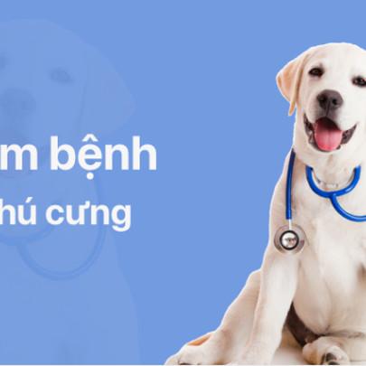 Mypet - Ứng dụng tiên phong tại Việt Nam về chăm sóc thú cưng toàn diện
