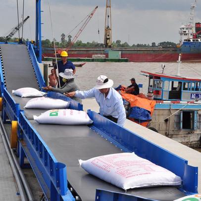 Năm 2020, Việt Nam có thể xuất 6,5-6,7 triệu tấn gạo