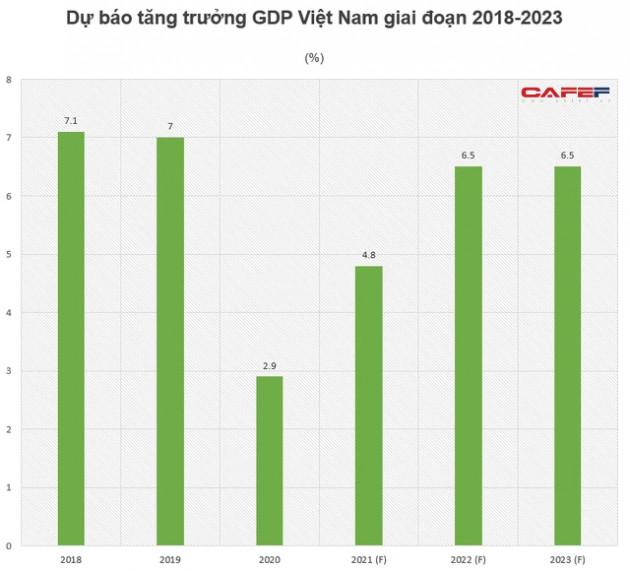 Ngân hàng Thế giới dự báo tăng trưởng GDP Việt Nam năm nay đạt 4,8% - Ảnh 1.