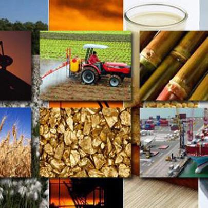 Thị trường ngày 7/10: Giá dầu tiếp tục tăng mạnh, vàng đi xuống; giá đường, ngô, đậu tương đồng loạt tăng cao