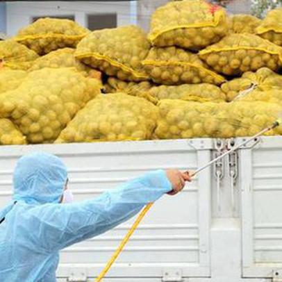 Thiếu kho đông lạnh, xuất khẩu nông sản gặp khó