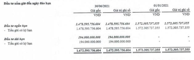 Viettel Post (VTP) báo lãi ròng quý 2 đạt 106 tỷ đồng, 6 tháng thực hiện 43% kế hoạch lợi nhuận năm - Ảnh 2.