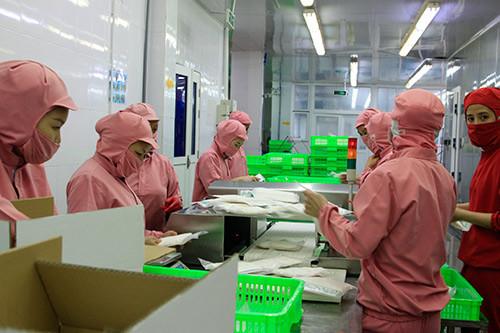 """Thủ tướng: Cần """"quả đấm thép"""" cho công nghiệp chế biến nông sản"""