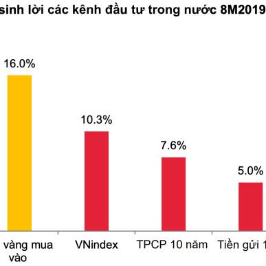 Thống kê mức độ sinh lời các kênh đầu tư trong 8 tháng đầu năm. Nguồn: SSI, Bloomberg, VBMA