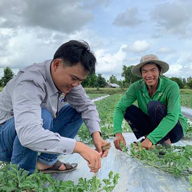 Việt Nam xuất khẩu hạt giống dưa hấu sang Nhật